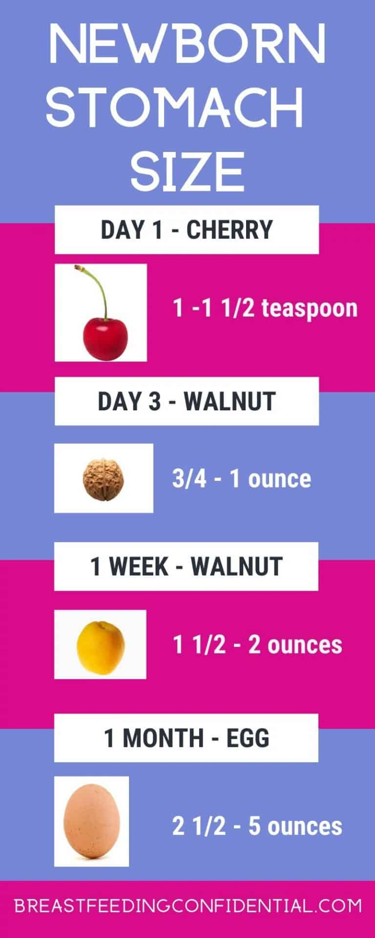 infographic of newborn stomach size in the first month